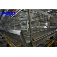 China High Quality poultry Egg Layer Chicken Cage(ISO9001) on sale