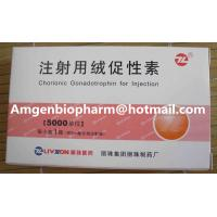 Best Healthy hormone weight loss hcg human chorionic gonadotropin injection wholesale