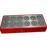 China 540W 10bands Apollo12 Full Spectrum LED Grow light Panel with Cree led lights For Indoor on sale