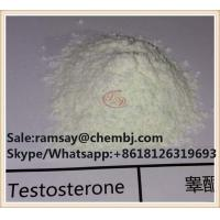 Best 99.0%High Purity Steroids Testosterone Base CAS 58-22-0 Factory Direct wholesale