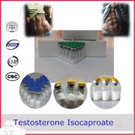 Best Testosterone Isocaproate Testosterone Anabolic Steroid CAS 15262-86-9 wholesale