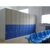Best Lightweight Double Tier Lockers , Blue Door Staff Room Lockers For Hospitals wholesale