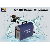 Best Fashion 5g Commercial Ozone Generator Vegetable Purifier For Removing Pesticide wholesale