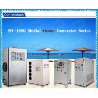 Best Automatic air dryer Ceramic Ozone Generator Water Purification For Fruits wholesale