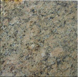 China Giallo Veneziano Granite on sale