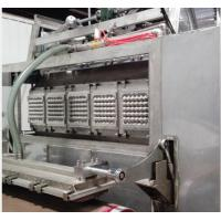 Durable Egg Tray Moulding Machine For Industrial Molded Fibre Products Packaging