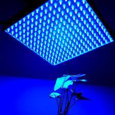 Best IP44 LED Panel Grow Light For Medical Plants / Greenhouse , High Brightness wholesale