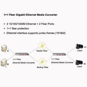 Best 1+1 Fiber Gigabit Ethernet Media Converter, 2 GE + 2 fiber ports, support jumbo frames wholesale
