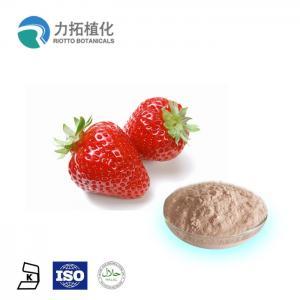 Best 100% Organic Certificate Bulk Freeze Dried Powder Fragaria x ananassa Duch wholesale