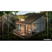 Best Light Steel Structure Modern Holiday Homes Wooden Appearance Slope Roof Type wholesale
