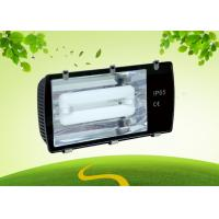 Best 250 Watt Induction Light 5000K , 85lm / W LED Tunnel Lamp For Outdoor wholesale