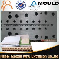 Best plastic extruder moulds dies for PVC door panel profile PVC wall panel bathroom door wholesale