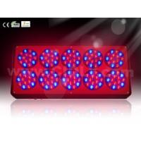 Best High Power 360W 550mA Dimable Professional LED Grow Light System10 Modules for Hydroponics wholesale