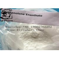 Best Muscle Building Steroids Methenolone Enanthate / Primobolan Enanthate CAS 303-42-4 wholesale