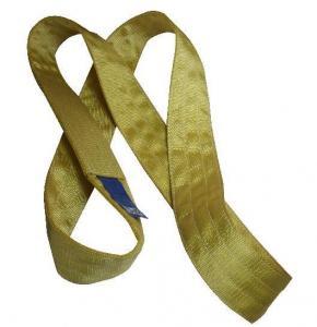 China polyester webbing sling,endless webbing sling on sale
