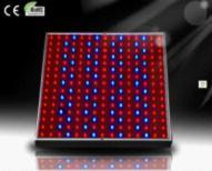 Best  50,000 Hours Life Span 14W ,85-264V Environmental Energy-efficiency LED Grow Light Panel  wholesale