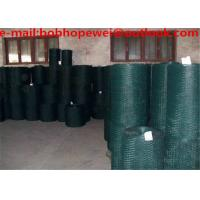 China Hexagonal Wire Mesh /PVC coated chicken wire /poultry wire/hex mesh/hex netting/chicken wire for sale on sale