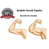 Best Safe Medical Muscle Building Anabolic Steroids Injection For Weight Loss wholesale
