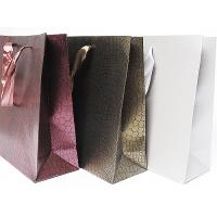 Best Hot sale shopping paper bag 2012 wholesale