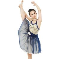 Best Ballet Dance Tutu Dress Competition Performance Wear Sweetheart Bodice Ballet Costume fairy princess wholesale