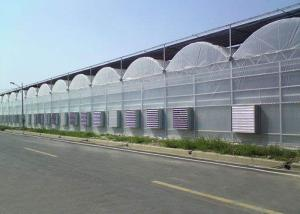 Best Cooling Plastic Film Vegetable 10m Multi Span Greenhouse wholesale