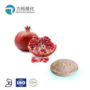 Best 100% Natural Fresh Pomegranate Powder Punica Granatum L HPLC UV 10% - 90% wholesale