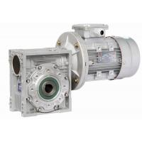 Cheap Double Shaft Mounted Nmrv Worm Gear Reducer , Pre-Stage Reduction Gear Unit for sale