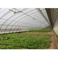 Best Assembled Solar Greenhouse Steel Pipe Single Tunnel For Seeding / Planting wholesale
