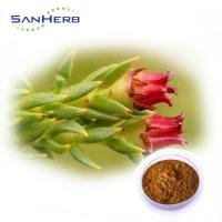 China Pincredit Supply Rhodiola Rosea Powder Extract Water Soluble Salidroside on sale