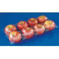 Best Manufactury Disposable plastic fruit packaging punnet Food grade material PET plastic food packaging box FDA EU approved wholesale