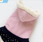 Best XS Pet Dog Winter Clothes Change Superman Lincarnations Loaded Jumbo wholesale