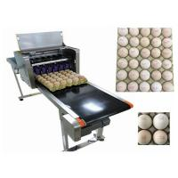 High Speed Food Inkjet Printer / Edible Printing Machine For Whole Disk Eggs