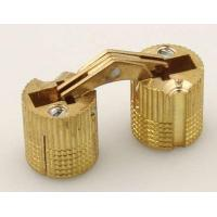 Best Invisible Hinge (CH0022) wholesale