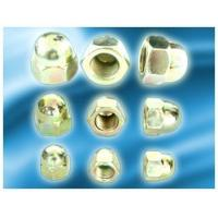 Best Hexagon Covered Nut-Bolt manufacturers wholesale