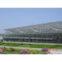 Best Multi-spangreenhouse wholesale
