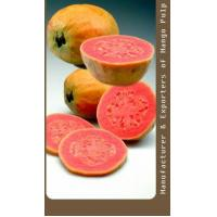 China Technical Specifications of Pink Guava Pulp - Natural on sale