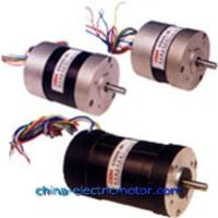 Most powerful brushless motor popular most powerful for Most powerful brushless motor