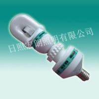 Best New-Style self-ballast induction lamp RZHL801A wholesale