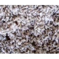 Best Organic Cottonseed & Product wholesale