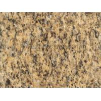 Best Imported Granite Santa Cecilia Medium Yellow Granite wholesale