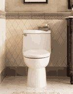 China AMERICAN STANDARD Champion 1 pc elongated toilet WHITE on sale
