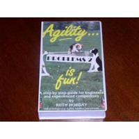 Best Agility is Fun - Problems 2 wholesale