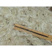 """Cheap WASHED Cotswold ~ 1 Ounce ~ 3-4"""" ~ WHITE for sale"""
