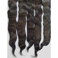 Best Exquisite Premium ~ KID Locks ~ Dark Brown ~ 1/2 oz ~ 5-6 in. wholesale