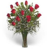 Buy cheap Premium Dozen Red Roses from wholesalers