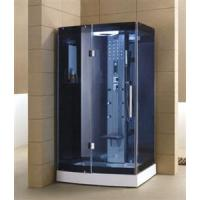 Simple Glass Steam Shower