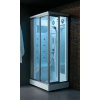 Transparent Glass Steam Shower Room