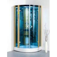 Large Glass Steam Shower Room