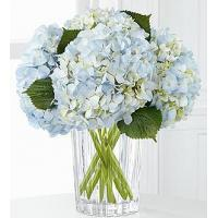 Best The FTD Joyful Inspirations Bouquet by Vera Wang wholesale
