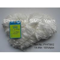 China Fancy yarns - Ribbon / tape yarn Nylon ribbon yarn on hanksFY-KT0812 on sale